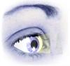 Low Vision Bureau logo